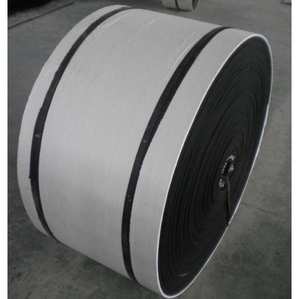 Nylon Conveyor Belt 24